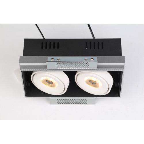 GRILL.10x2T карданный безрамочный светильник 2х10W